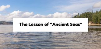 """The Lesson of """"Ancient Seas"""""""