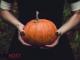 Gargoyles and Pumpkins