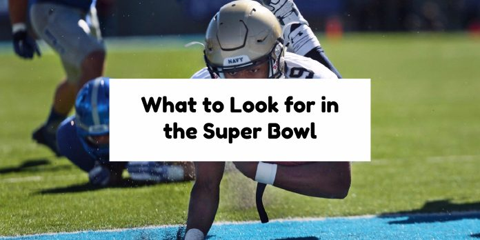 What to Look for in the Super Bowl