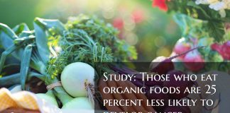 Study: Those who eat organic foods are 25 percent less likely to develop cancer